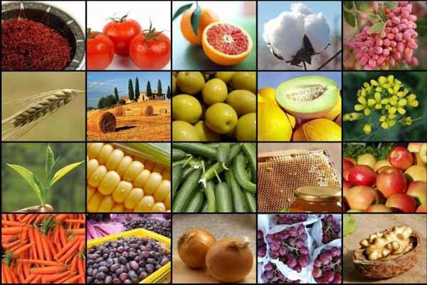 7 4 - کاهش میزان واردات و قیمت جهانی محصولات کشاورزی