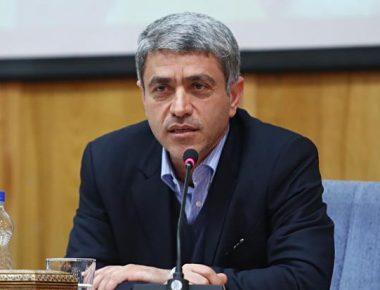 وزیر اقتصاد مقاومتی