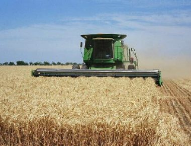 کشاورزی اقتصاد مقاومتی