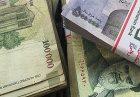 28824 Page  2 140x97 - امكان سنجی استفاده از منابع بانک مركزی در جهت توسعه كشور