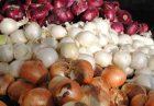 57512750 140x97 - افزایش قیمت پیاز، نتیجه ناهماهنگی ستاد تنظیم بازار با وزارت کشاورزی