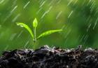 بارش باران 140x97 - چرا بارش باران منابع آبی کشور را افزایش نمیدهد؟