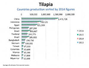تیلاپیا فیلیپین 300x230 - اشتغال 5 هزار کارخانه در ویتنام با تولید 300 هزار تن ماهی تیلاپیا