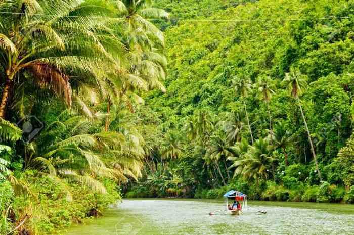 5378405 Cruising boat on Rainforest River Stock Photo amazon - حل «بحران آب» در برزیل با احیای جنگل آمازون