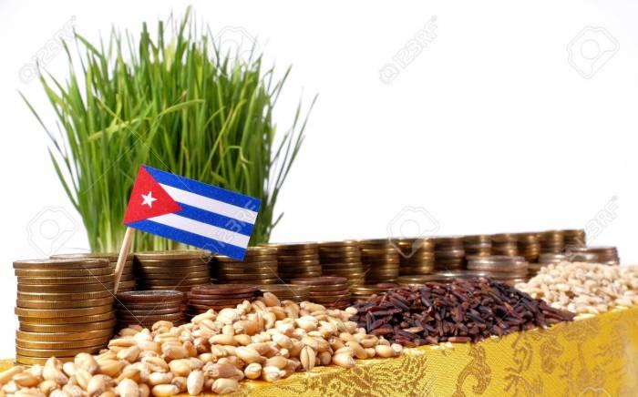 70831162 cuba flag waving with stack of money coins and piles of wheat and rice seeds - برنامهریزی بریتانیا برای صادرات پایدار گندم به کوبا
