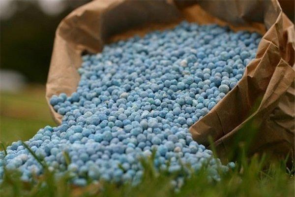 2595186 - دستور رئیس جمهور برای پرداخت یارانه به تولیدکنندگان کود اوره