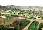 Constructed terrace for agriculture on the Loess Plateau 639 140x97 - حل مشکل کم آبی در چین با توسعه پوشش گیاهی و آبخیزداری