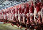 حمایت از تولید گوشت قرمز اقتصاد مقاومتی