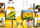 حمایت از تولید دانه های روغنی اقتصاد مقاومتی