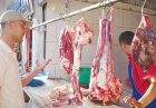 واردات گوشت یارانه واردات