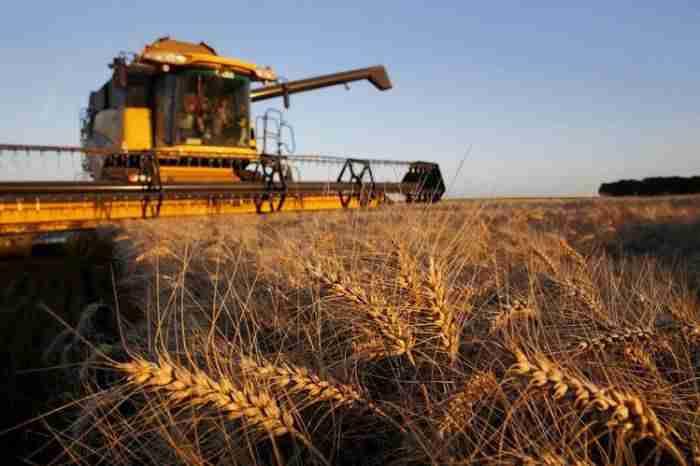 دولت آلمان چگونه از کشاورزی خود حمایت می کند؟!