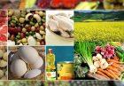 لزوم اجرای قانون تمرکز وظایف بازرگانی در وزارت جهاد کشاورزی اقتصاد مقاومتی
