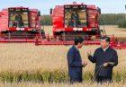اهمیت تامین امنیت غذایی در چین اقتصاد مقاومتی