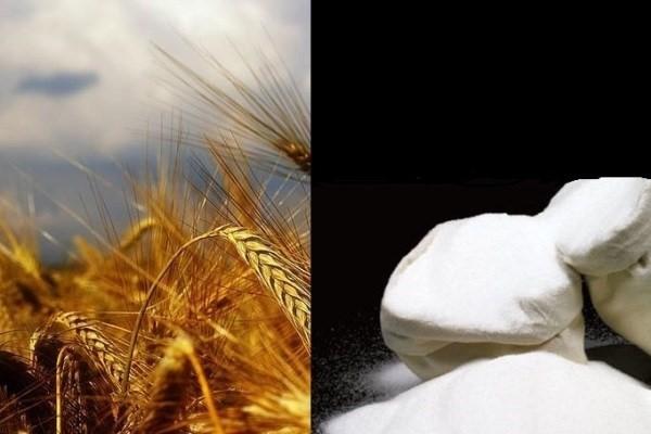 خودکفایی در تولید گندم و شکر اقتصاد مقاومتی
