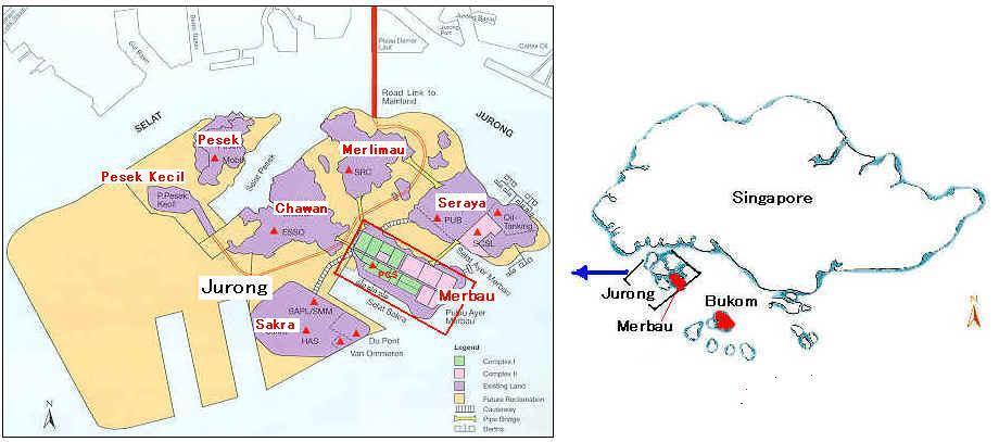 سیاستگذاری هوشمندانه دولت سنگاپور برای توسعه صنعت پتروشیمی
