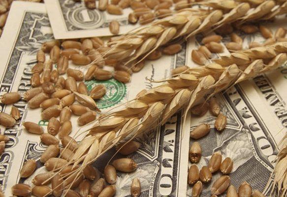واردات گندم خارجی اقتصاد مقاومتی