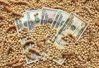 حمایت دولت آرژانتین از تولید و صادرات روغن و کنجاله سویا اقتصاد مقاومتی