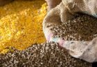 مدیریت وزارت جهاد کشاورزی بر بازار نهاده های دامی اقتصاد مقاومتی