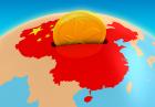 سرمایه گذاری خارجی چین