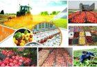 طرح امنیت غذایی مجلس اقتصاد مقاومتی